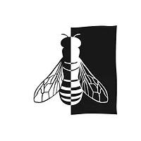 Logo Les Ruchers du pays blanc